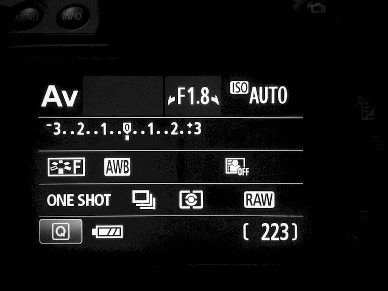 Camera settings display with ISO, aperture, RAW