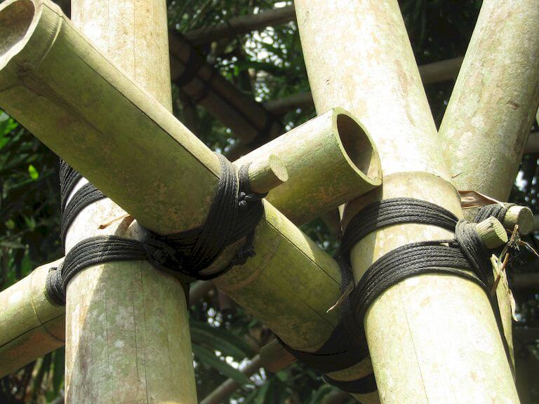 Knotted bamboo