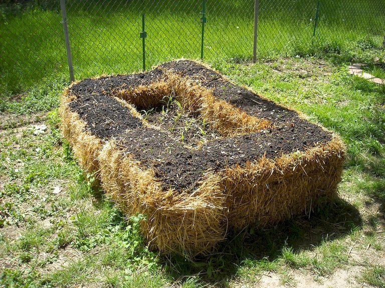 The Complete Beginner's Guide to Straw Bale Gardening