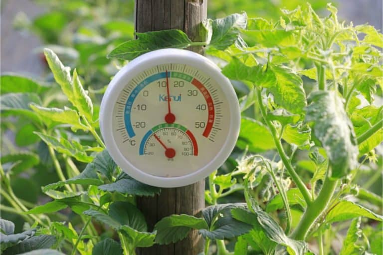 temperature and humidity in the greenhouse