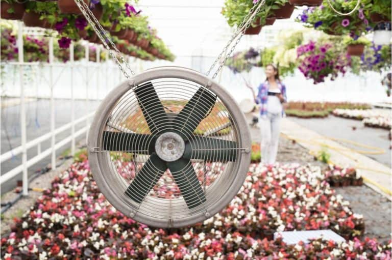 Air ventilation system blowing fresh air in greenhouse