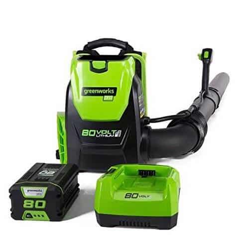 Greenworks BPB80L2510