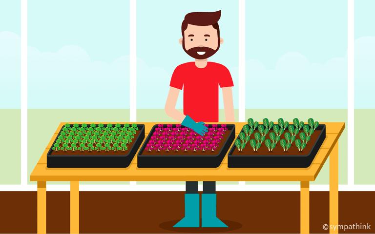 Grow Micro Greens Inside