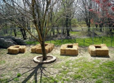 What is Straw Bale Gardening and How to Get Started