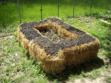 How to Build a Straw Bale Garden in 7 Steps: Layout, Preparations & Irrigation