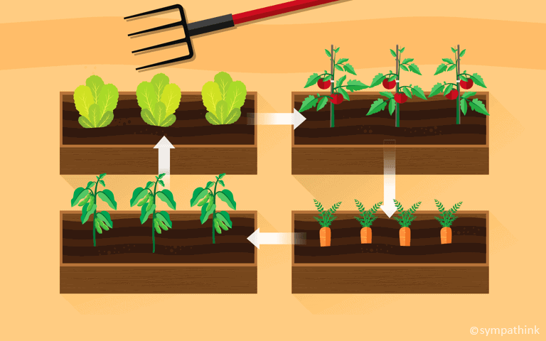 practice crop rotation
