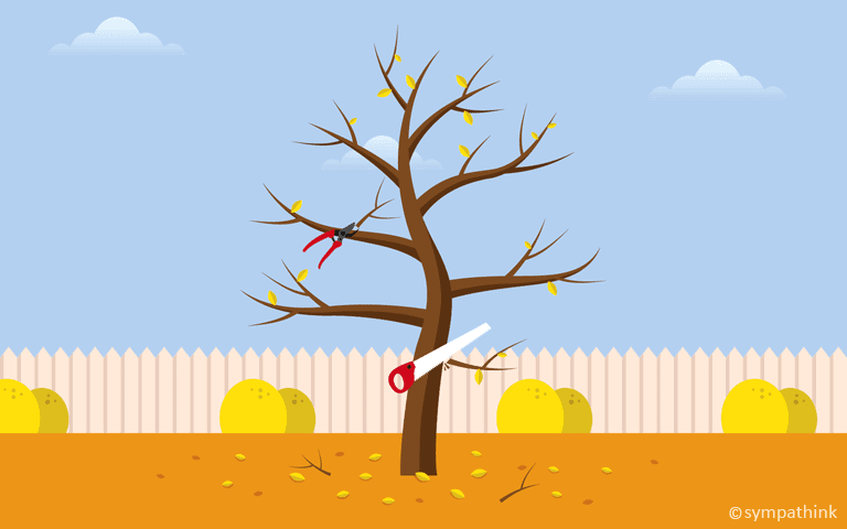 Prune Your Fruit Trees