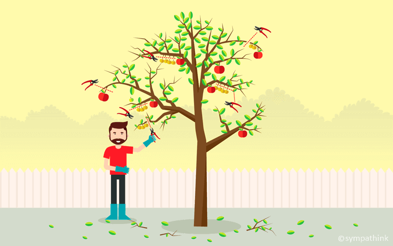 How to Prune and Plant Fruit Trees for Higher Yields